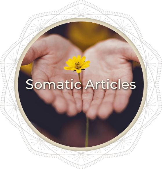 Somatic Articles